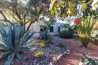 Tucson Single Family Home For Sale: 5150 W Placita Del Herrero