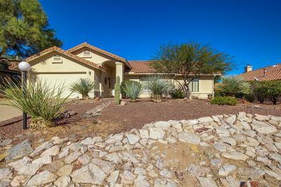 Tucson Single Family Home For Sale: 2430 W Catalpa Road