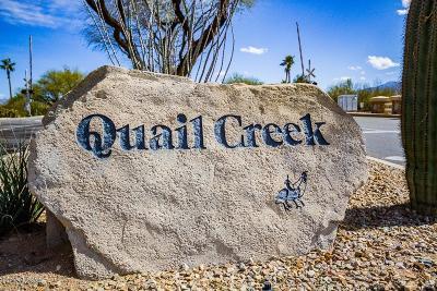 Single Family Home For Sale: 2297 E Desert Pueblo Pass