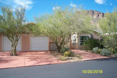 Catalina, Corona De Tucson, Green Valley, Marana, Oro Valley, Sahuarita, South Tucson, Tucson, Vail Manufactured Home Active Contingent: 2000 S Tilting T Place