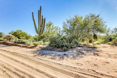 Tucson Residential Lots & Land For Sale: 5353 W Lambert Lane