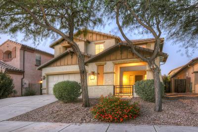 Oro Valley Single Family Home For Sale: 1246 W Vinovo Pass