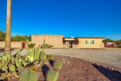 Tucson Single Family Home For Sale: 8100 N Boreal Drive