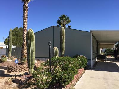 Pima County Manufactured Home For Sale: 6350 N Orange Blossom Lane