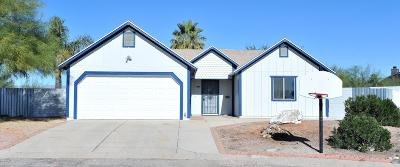 Tucson Single Family Home For Sale: 8580 N Delta Way