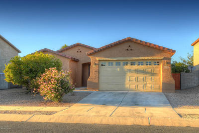 Tucson Single Family Home For Sale: 5568 W Red Racer Drive