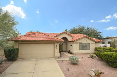 Tucson Single Family Home For Sale: 37970 S Silverwood Drive