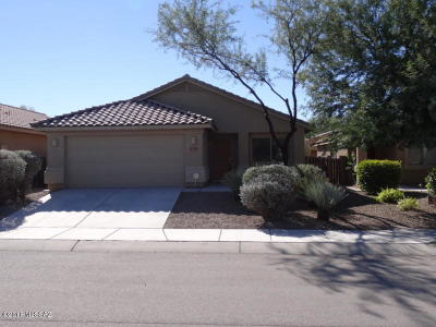 Pima County, Pinal County Single Family Home For Sale: 7338 E Laughing Tree Lane
