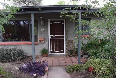Tucson Single Family Home For Sale: 1025 E Hampton Street