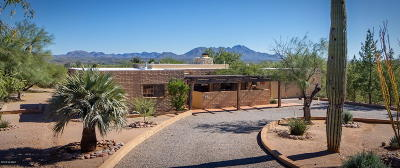 Tubac Single Family Home For Sale: 40 Circulo Primeria Alta