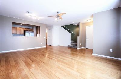 Single Family Home Active Contingent: 6002 S Cedar Elm Lane