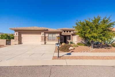 Tucson Single Family Home For Sale: 1788 S Deer Head Place