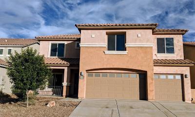Sahuarita Single Family Home For Sale: 14282 S Via Del Moro