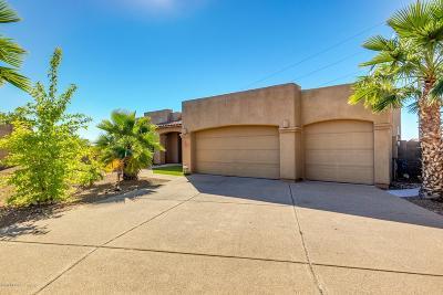 Pima County, Pinal County Single Family Home For Sale: 3916 S Camino Ensenada Del Pantano