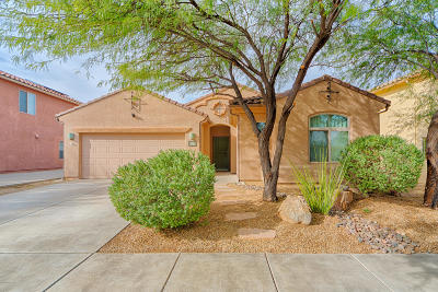 Tucson Single Family Home For Sale: 5900 S Courtland Drive