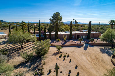 Tucson Single Family Home For Sale: 11440 E Pantano Trail