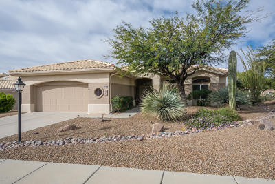 Pima County Single Family Home Active Contingent: 14186 N Fawnbrooke Drive