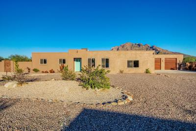 Tucson Single Family Home For Sale: 9002 N Morning View Drive