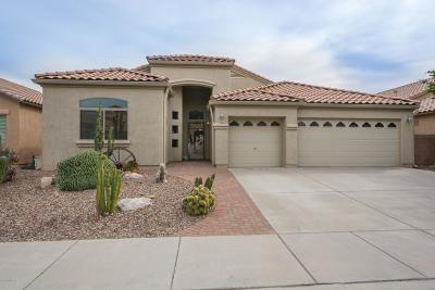 Tucson Single Family Home For Sale: 8516 N Sand Dune Place