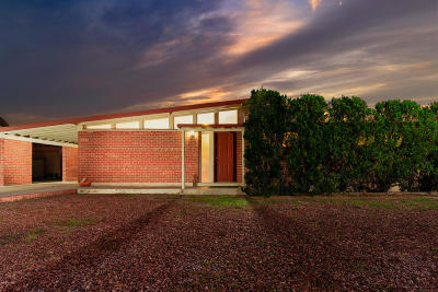 Tucson Single Family Home For Sale: 6736 E 17th Street
