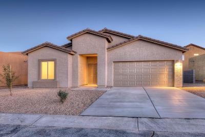 Tucson Single Family Home For Sale: 6405 E Koufax Lane