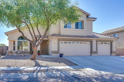 Tucson Single Family Home For Sale: 6453 W Misty Mountain Way