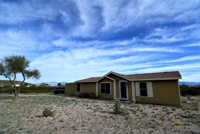 Tucson Mobile Home For Sale: 8033 S Farmcreek Drive