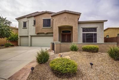 Oro Valley Single Family Home For Sale: 11903 N Mesquite Hollow Drive