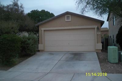 Tucson Single Family Home For Sale: 6126 S Earp Wash Lane