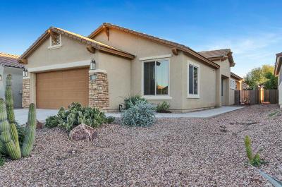 Sahuarita Single Family Home For Sale: 419 W Calle Media Luz