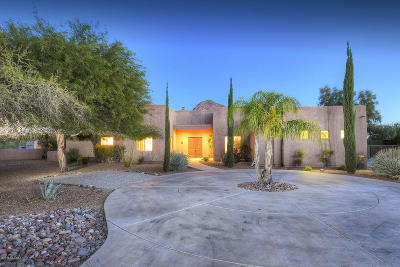 Tucson Single Family Home For Sale: 45 W Lambert Lane