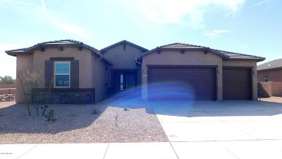 Tucson Single Family Home For Sale: 1659 W Hyperion Street