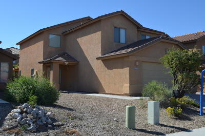 Tucson Single Family Home For Sale: 4010 E Agate Knoll Drive