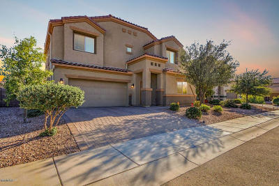 Marana Single Family Home For Sale: 8797 W Moon Spring Road