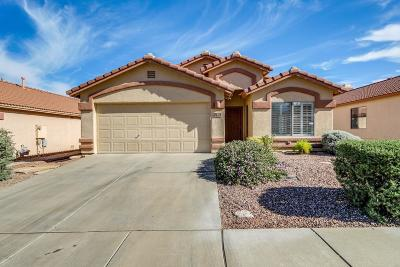 Tucson Single Family Home For Sale: 76 N Shadow Creek Place
