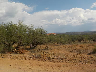 Rio Rico Residential Lots & Land For Sale: 1612 Tonina Court #104