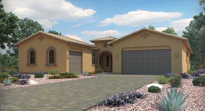Marana Single Family Home Active Contingent: 14382 N Whitehorn Place
