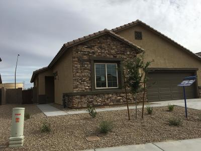 Marana Single Family Home For Sale: 11037 W Riverton Drive