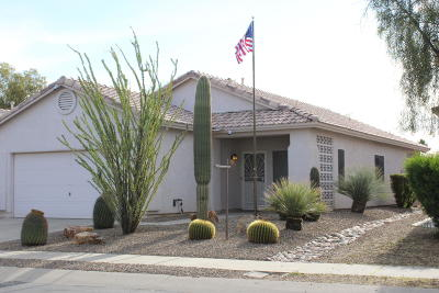 Tucson Single Family Home For Sale: 9382 N Painted Sky Drive