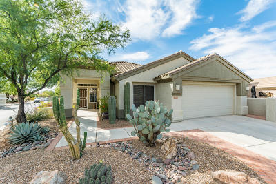 Marana Single Family Home For Sale: 5333 W Eagle Gulch Court