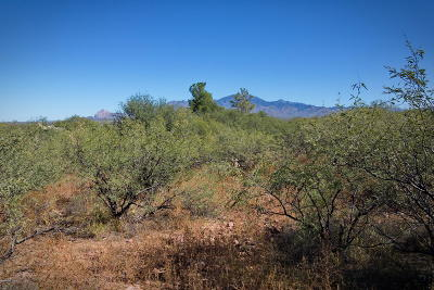 Tubac Residential Lots & Land For Sale: 2246 Calle Palo Parado #77