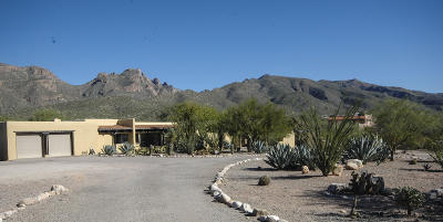 Tucson Single Family Home For Sale: 5071 N Bear Canyon Road