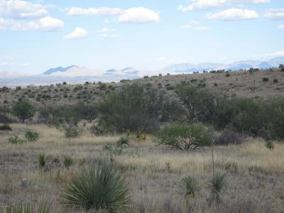 Residential Lots & Land For Sale: N Tequila Trail N