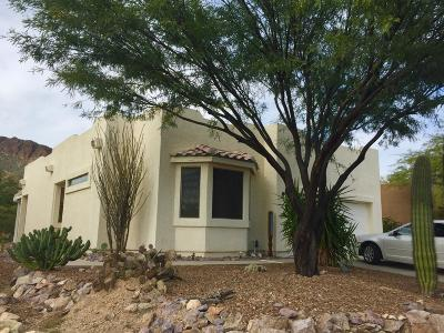 Tucson Single Family Home For Sale: 2020 S Doubletree Lane