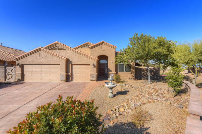 Tucson Single Family Home For Sale: 7378 S Silky Willow Drive