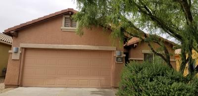 Tucson Single Family Home For Sale: 5940 S Starling Drive