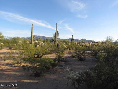 Residential Lots & Land For Sale: 6470 N Gemstone Road