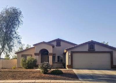 Tucson Single Family Home For Sale: 5582 W Red Rock Ridge Street
