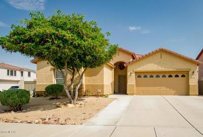Tucson Single Family Home For Sale: 8445 E Ramona Madera Lane