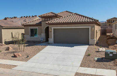 Vail AZ Single Family Home For Sale: $288,625